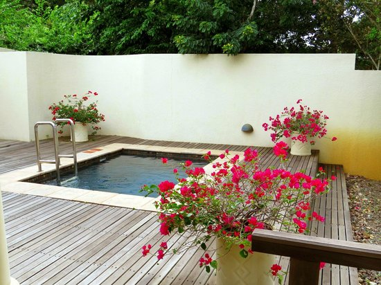 Rattray's on MalaMala : Private plunge pool