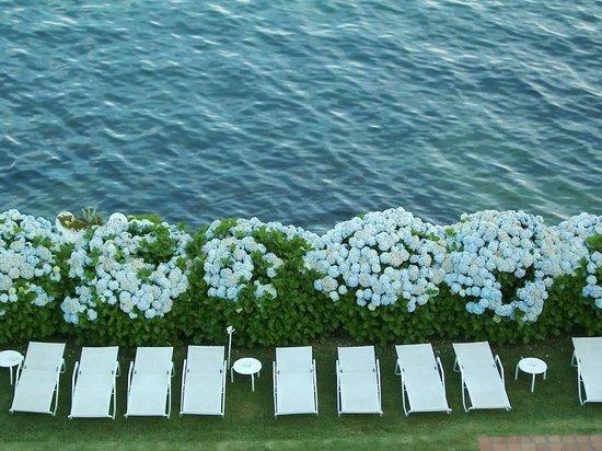 Talaso Hotel Louxo la Toja: Las hortensias en flor