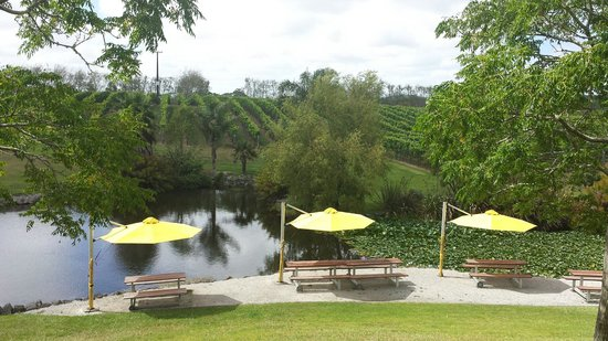 Auckland Wine Trail Tours: One of the wineries