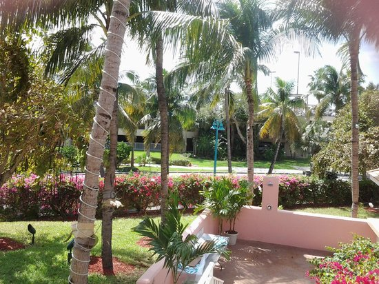 Comfort Suites Paradise Island: Hotel Grounds
