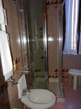 Hotel Carlton on the Grand Canal: Room shower