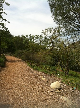 Conejo Valley Botanic Garden: U forget you're in L.A.