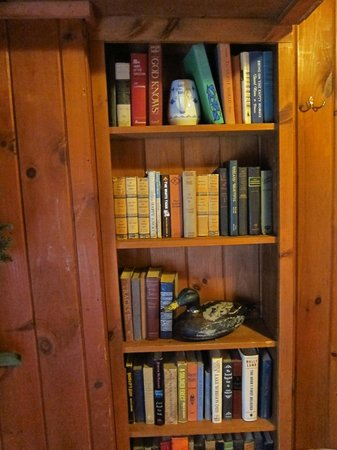 Timberholm Inn : Book case in room