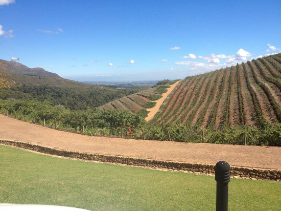 Tokara Restaurant : view from the terrace