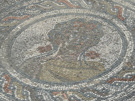 Volubilis: mosaique