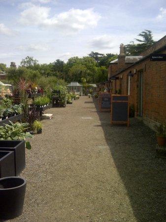 """Medicine Garden: The """"hall"""" between shops"""