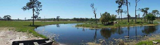 Safari Wilderness : Great Vista