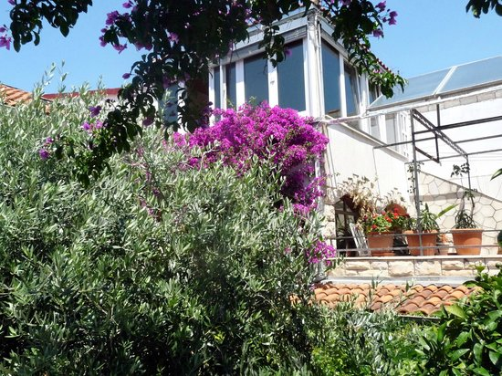 Villa Nina: The wintergarden