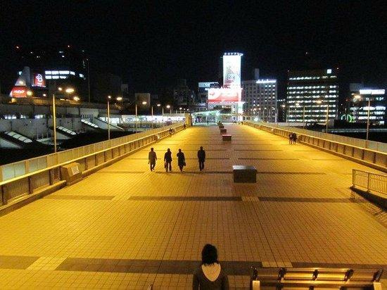 ueno bridge near the station
