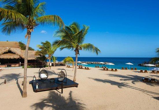 soak up the sun on the beach near the neptunes restaurant. Black Bedroom Furniture Sets. Home Design Ideas