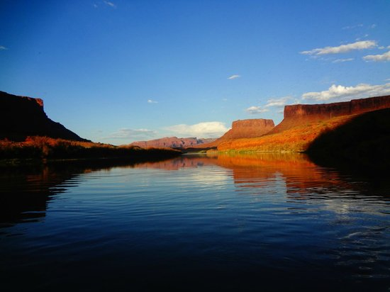 Red Cliffs Lodge : Colorado River
