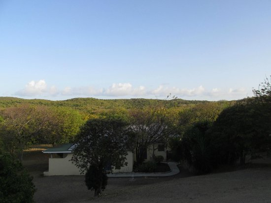 Harmony Hall Boutique Hotel: view