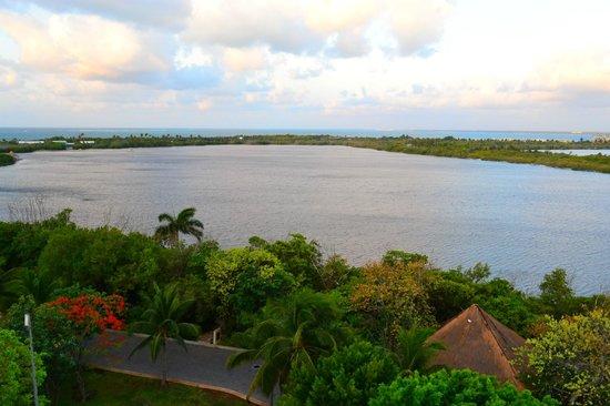The Westin Resort & Spa Cancun : Lagoon view