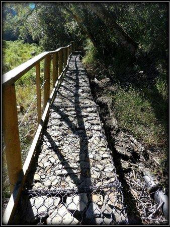 Wilderness National Park : Paths