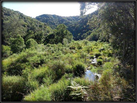 Wilderness National Park : Scenery