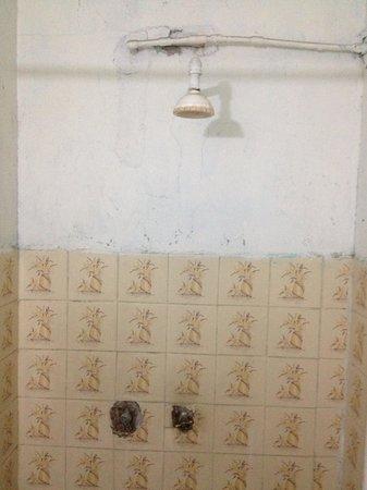 Posada el Refugio: Shower