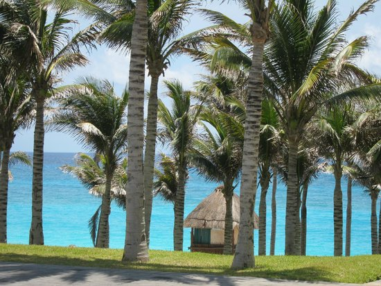 The Westin Resort & Spa Cancun : View from hotel front