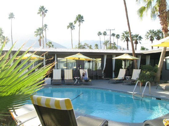 Avanti Hotel: Palm trees and pool