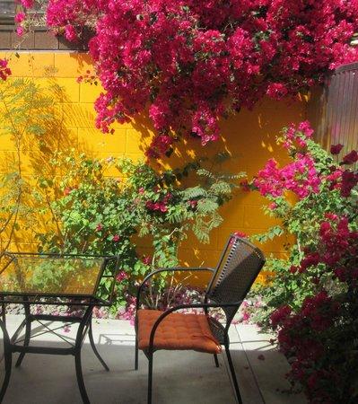 Avanti Hotel: Suite 3's charming Patio