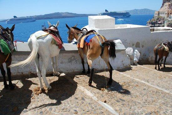 Karavolades Stairs, Ormos, Fira, Santorini, Greece