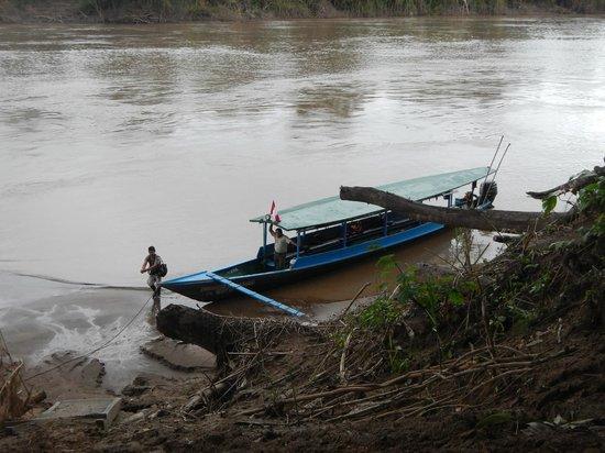 Posada Amazonas: River Boat