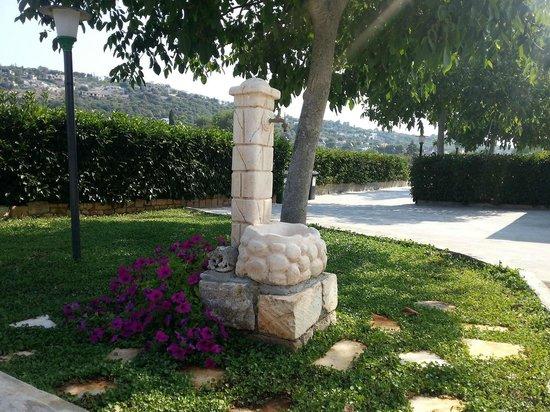 Villa Olimpo B&B : fontana giardino