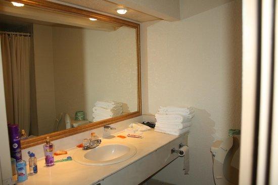I-Drive Grand Resort & Suites: Banheiro