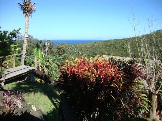 Domaine Karaibes : vue depuis la terrasse