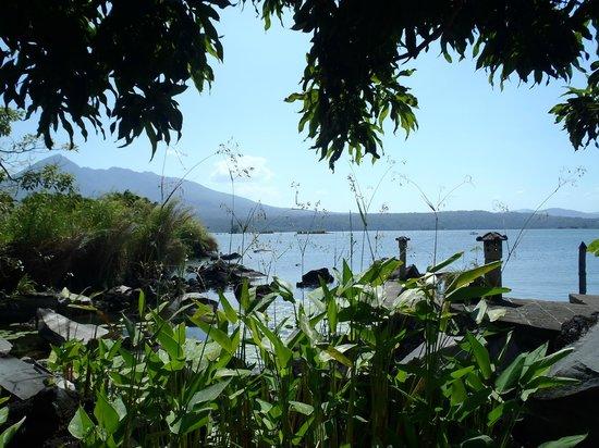 Nicaragua Adventures - Day Tours: Zopango Island view
