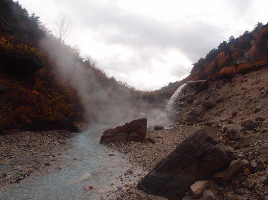 Numajiri Kogen