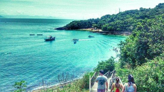 Azedinha Beach : Visa de cima das praias Azeda e Azedinha