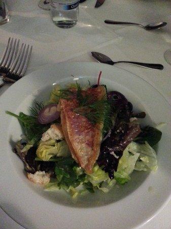 Hotel am Molkenmarkt: Frischer Salat mit Rotbarbe