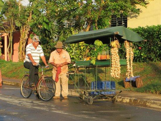 Villa Los Pandaderos: streetview in vinales