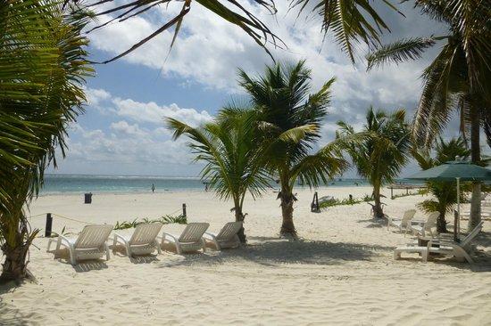 Cabanas Zazilkin: Lounge chairs and shade
