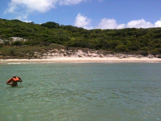 Ponta Negra Beach: Praia das Tartarugas do passeio de jangalancha