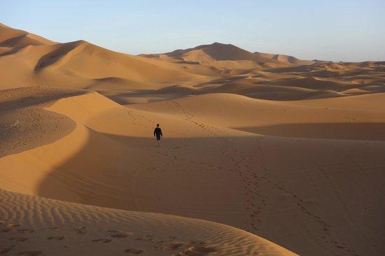 Riad Nezha : Erg Chebbi dunes, close to the riad