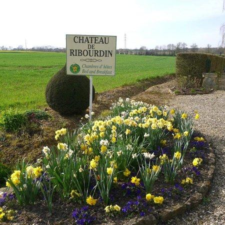 Château de Ribourdin : printemps