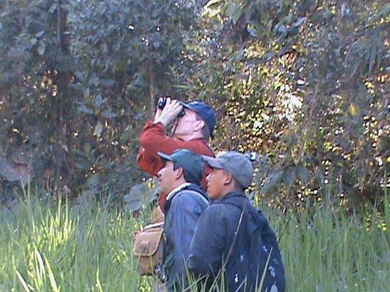 Hostal Jardin de los Pajaros: birdwaching
