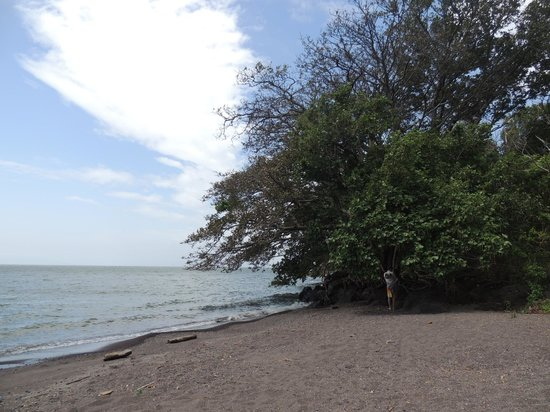 Finca Mystica : Nearby swimming beach with fantastic breeze and shade