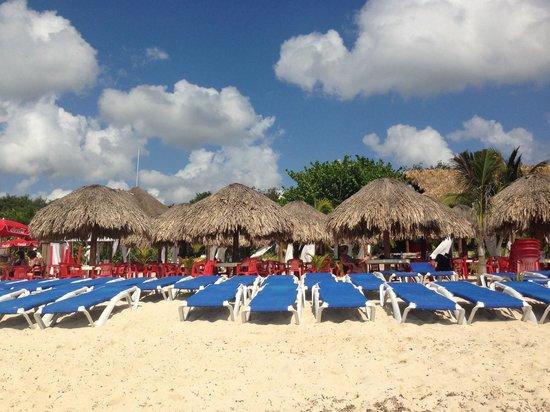 Mr Sanchos Beach Club Cozumel: Beach and Cabanas