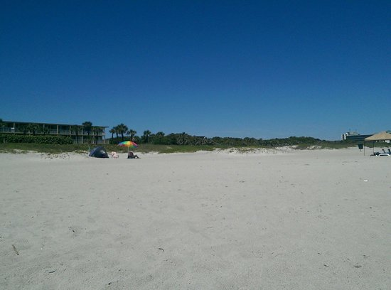 International Palms Resort & Conference Center Cocoa Beach: Lori Wilson park next door