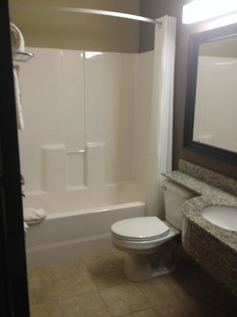Microtel Inn & Suites by Wyndham Kalamazoo: Shower