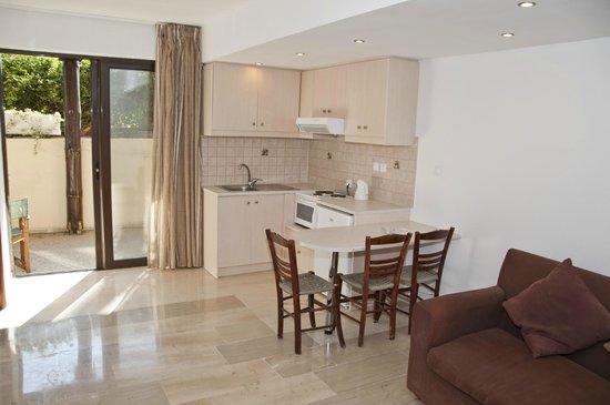 Oasis Hotel: kitchenette apt b