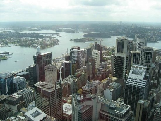 Sydney Tower Eye and Skywalk : View from tower when overcast