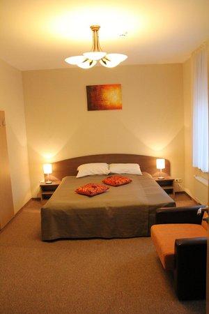 Dzintars Hotel: Superior room