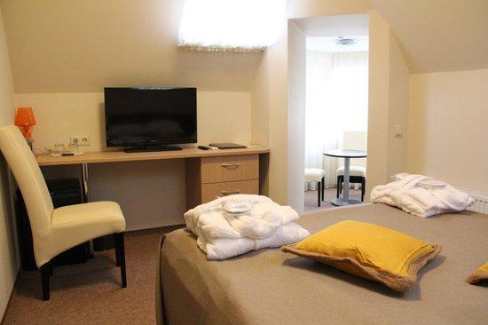 Dzintars Hotel: Junior room