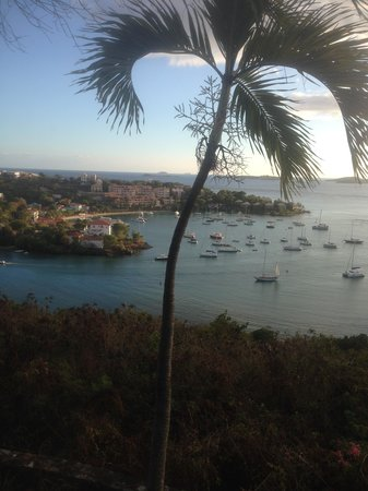 The Westin St. John Resort Villas : view from Asolare restaurant