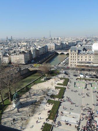 Tours de la Cathedrale Notre-Dame : seine