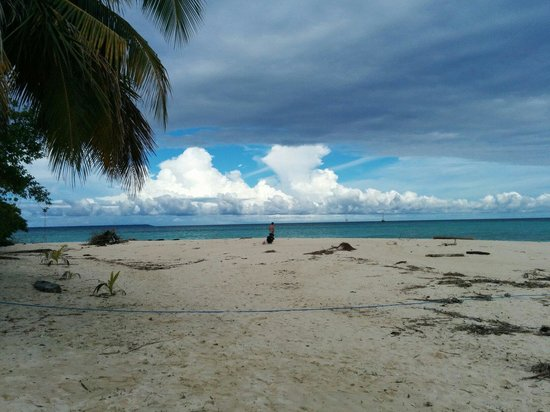 Derawan Islands, Indonesien: One of beach in sangalaki island.
