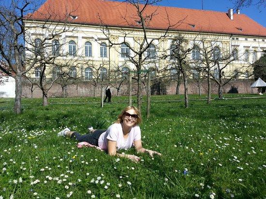 Schloss Dachau: В Дахау пришла весна